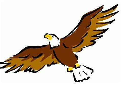 Essay on eagle bird in english